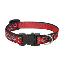 Load image into Gallery viewer, Wild West Dog Collar