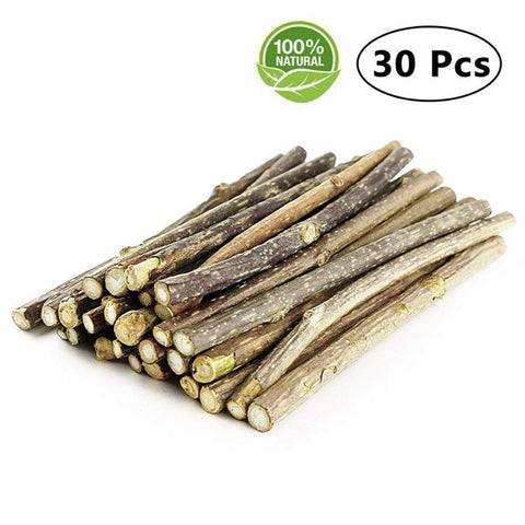 Image of Cat Catnip Sticks Natural Matatabi Silvervine Sticks - Cleaning Teeth Molar Tools Kitten Cat Chew Toy Natural Catnip Mouse Cat Toy