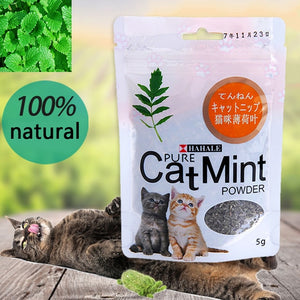 Premium Catnip Hot Sale Cat Mint Natural Pet Food Organic Funny Toy
