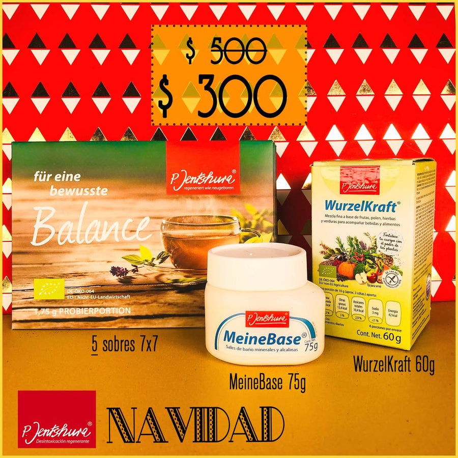Kit Navideño Mini
