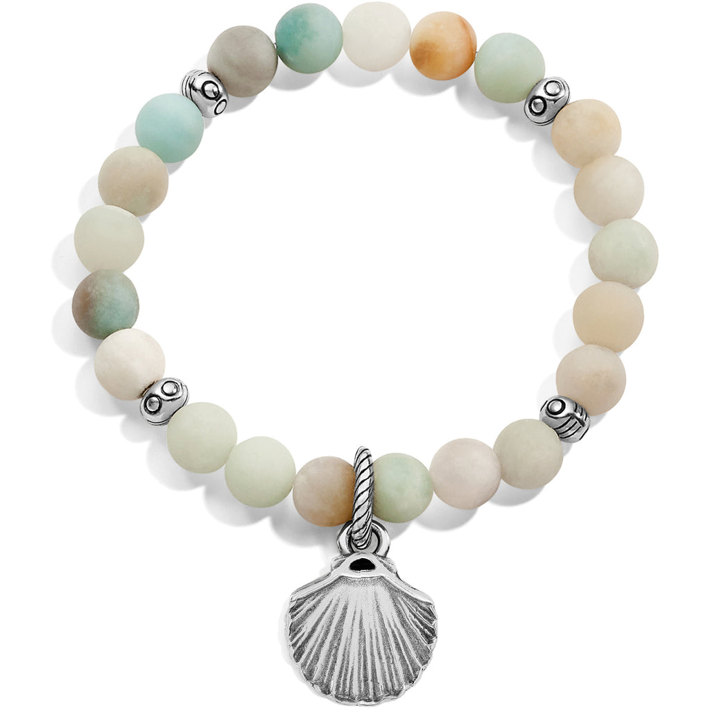 Sea Shore Shell Stretch Bracelet - Jenna Jane's Jewelry