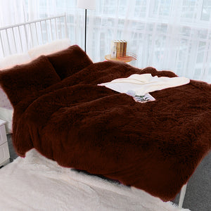 Fluffy Blanket With Pillow Cover