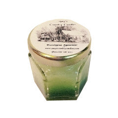 Eucalyptus Spearmint Hex - Amy's Country Candles