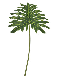 Philodendron Leaves 80cm (Set of 5)