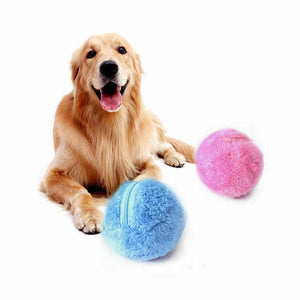 Pet Electric Toy Ball Magic Roller Ball Toy Automatic Roller Ball magic ball Dog Cat Pet Toy Need To Use Battery 5pcs/Set - Haim Place