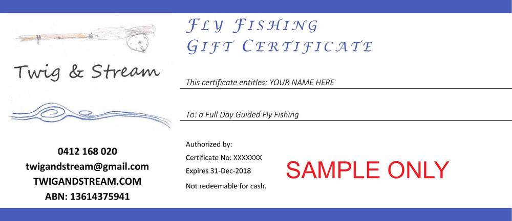 Guided Fly Fishing Experience