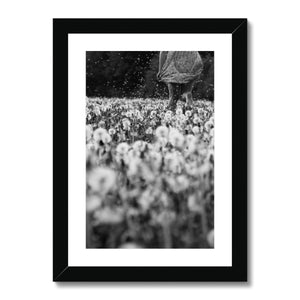 Dandelion Dream - Framed & Mounted Print