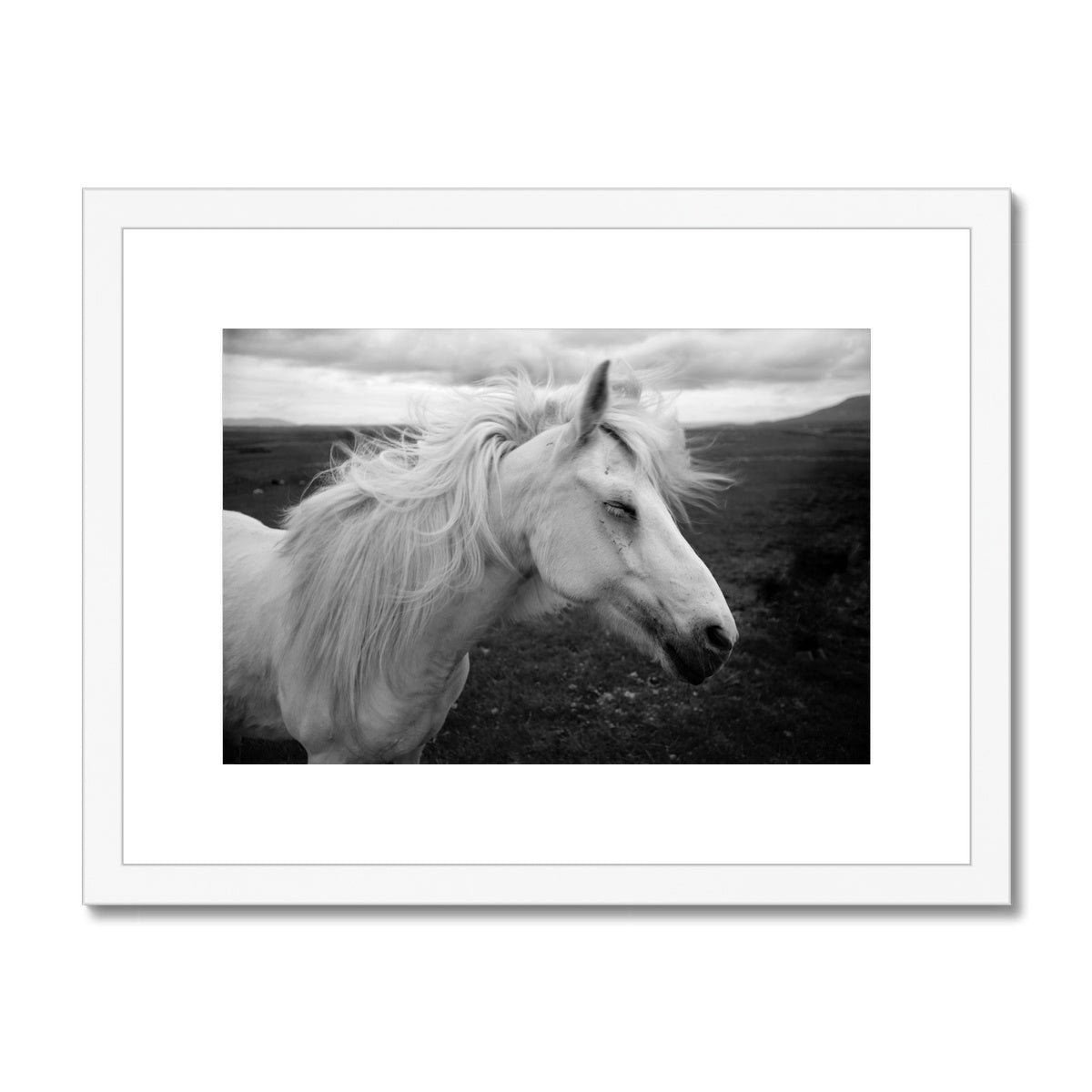 Enchanted - Framed & Mounted Print