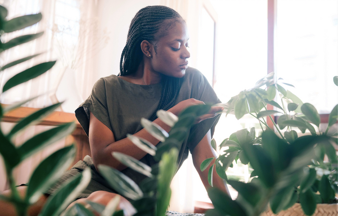 How Houseplants Positively Impact the Mind & Body