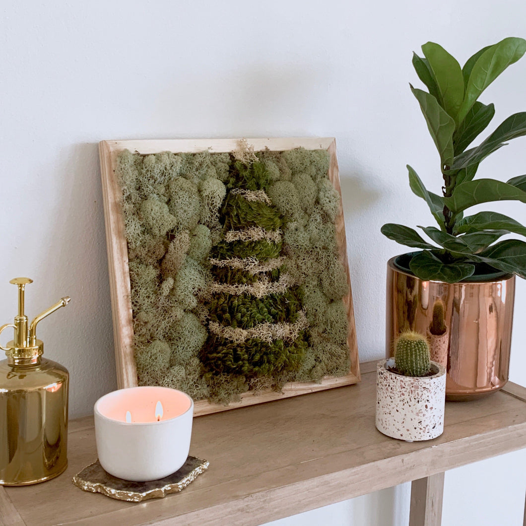 Holiday Mossy Decor