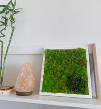 Load image into Gallery viewer, Moss Wall | Preserved Green Decor - Outside In