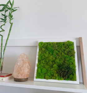 Moss Wall | Preserved Green Decor - Outside In