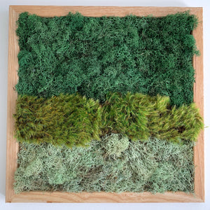 Ombre Moss Wall | Multicolor Preserved Greenery - Outside In