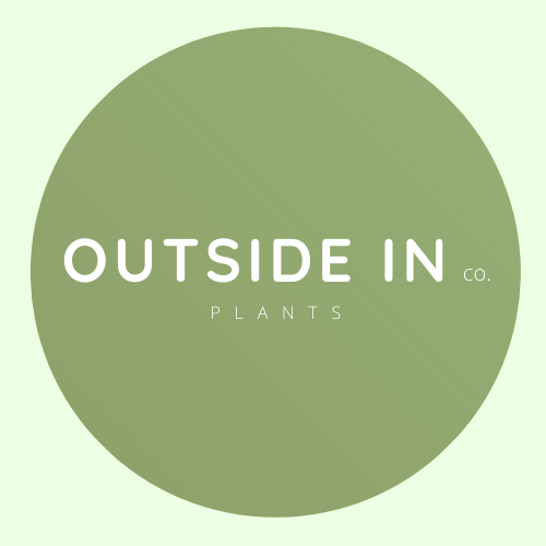 Gift Card - Outside In