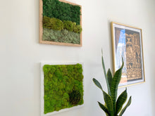 Load image into Gallery viewer, Ombre Moss Wall | Multicolor Preserved Greenery - Outside In