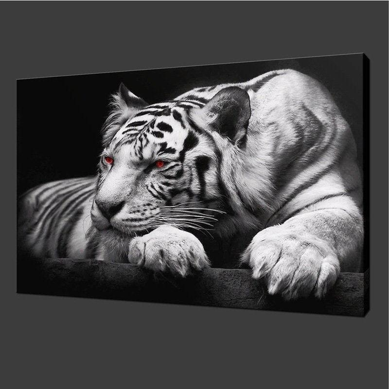 1 Pieces White Tiger Black and White Large Size Beautiful Colorful HD Modern Home Wall Decor Photography Canvas Print Oil Painting Wall Art Picture House Decoration Posters Design for Women and Men
