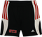 STB Shorts by Adidas