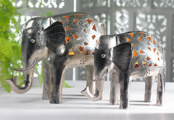 Elephants in the Home