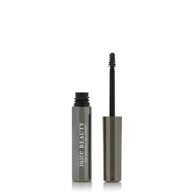 Phyto Pigments Brow Envy 2g