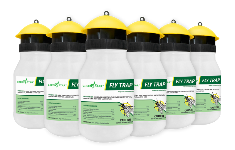 Fly Trap | Green Star