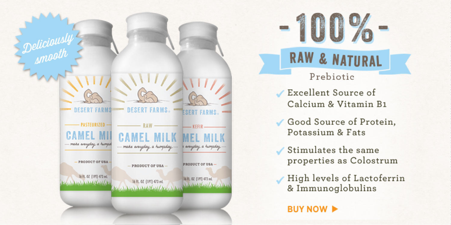 camel milk is nature most wholesome dairy beverage