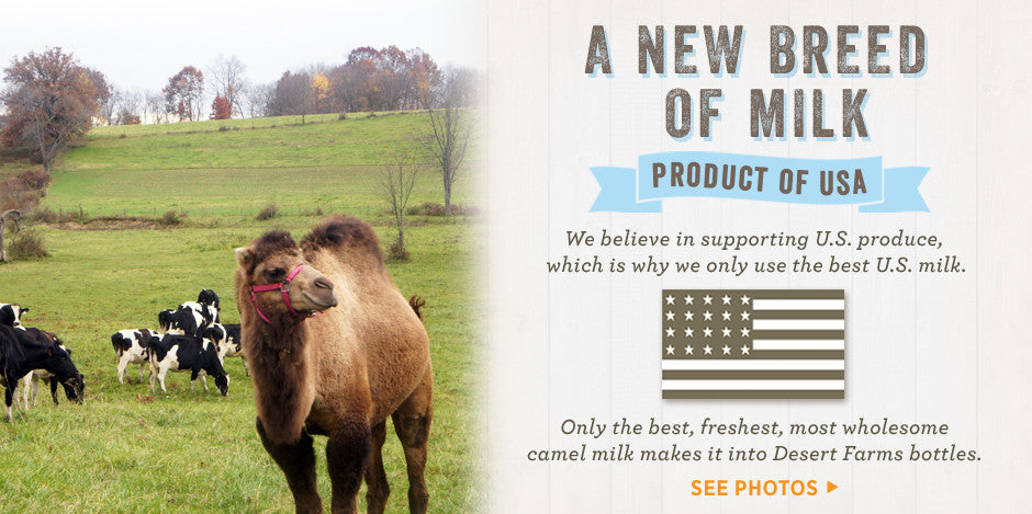 Camel milk is a product of USA
