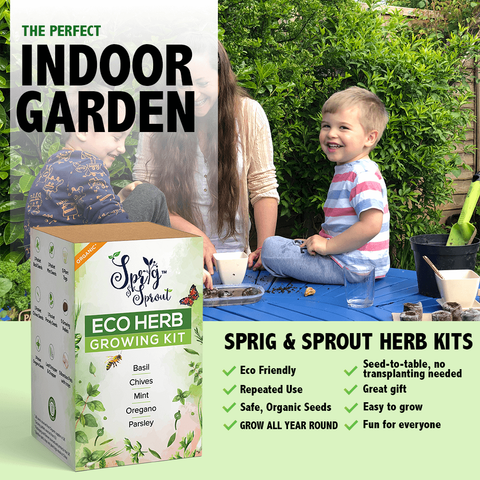 Sprig & Sprout Grow Your Own Herb Garden