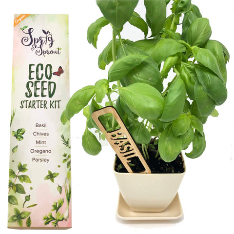 Mini Herb Garden Kit