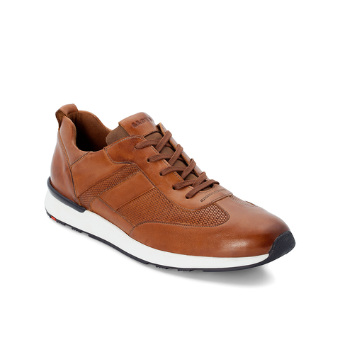 LLOYD / ALFONSO - Trainers Brown