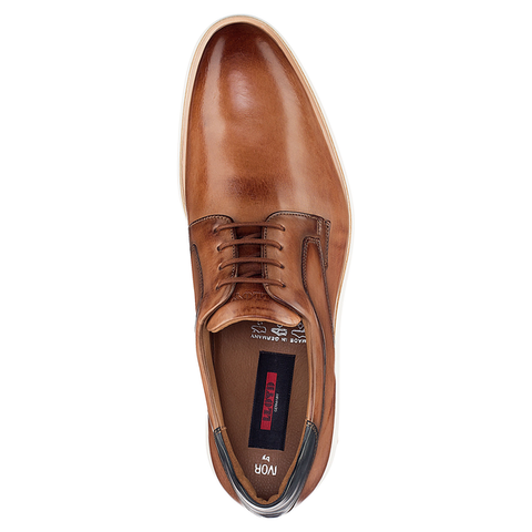 LLOYD / IVOR - Derby Shoes Cognac