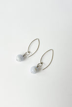 Load image into Gallery viewer, Sphere Fish Hook Earrings