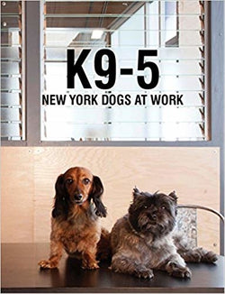 K9-5 New York Dogs at Work