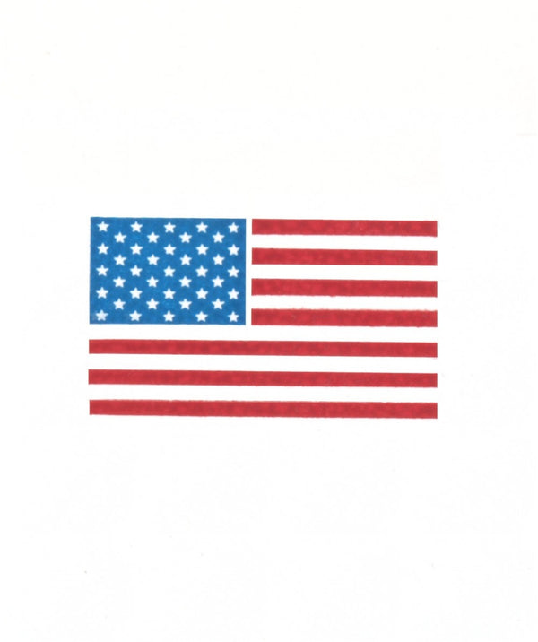 American Flag Cards, Set of 10