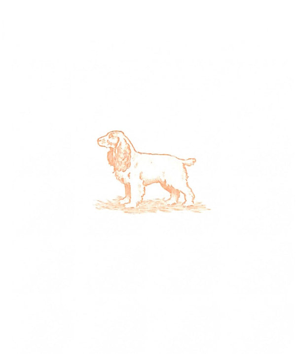 Cocker Spaniel Notecards, Set of 10