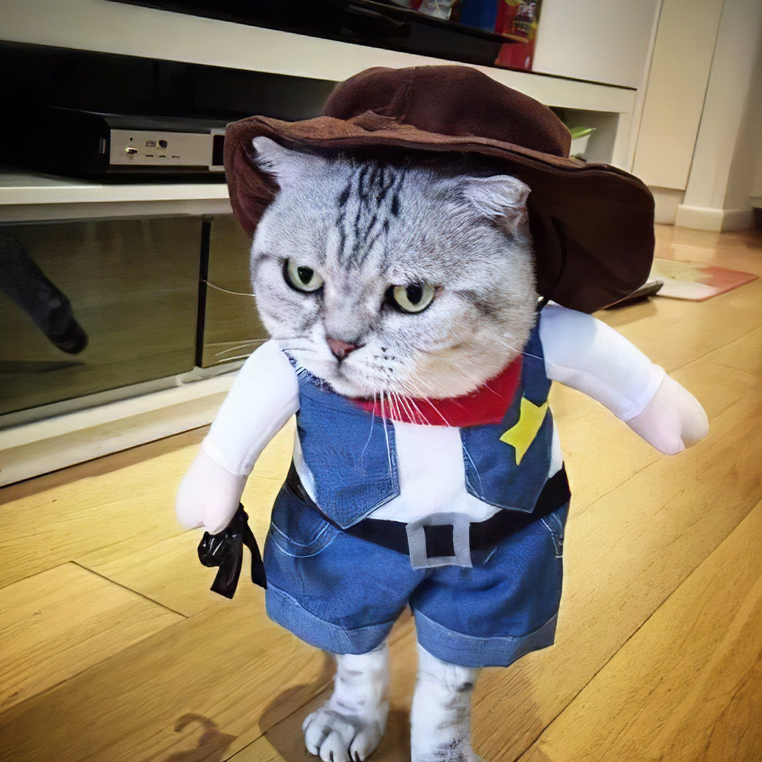 Kitty Halloween Costume
