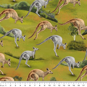 Wildlife Valley Jumping Kangaroos