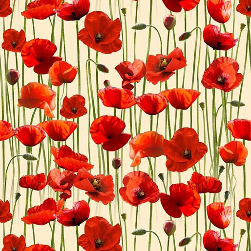 Remembering Poppies on Cream Allover