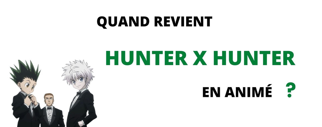 Anime Hunter x Hunter : Reprise très probable en 2021