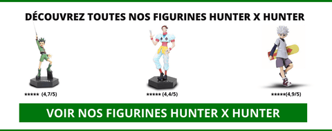 Figurines Hunter x Hunter