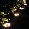 Solar Powered Garden Lights (Waterproof)