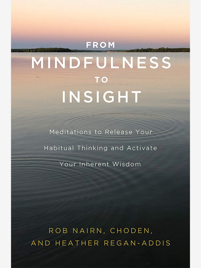 From Mindfulness to Insight