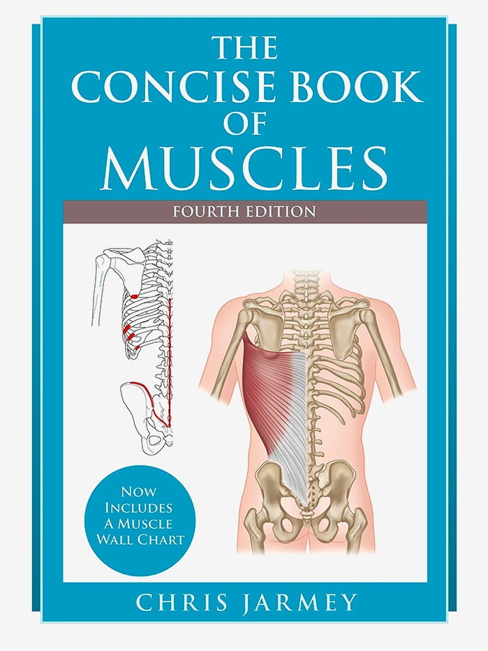 The Concise Book of Muscles (4th Edition)