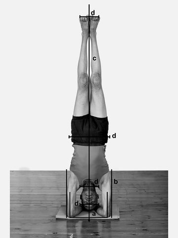 Props for Yoga Volume 3: Inverted Asanas