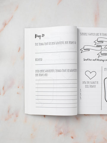 Gratitude Journal: 100 Days of Gratitude