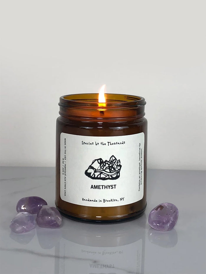 Species by the Thousands Crystal Candle - Amethyst