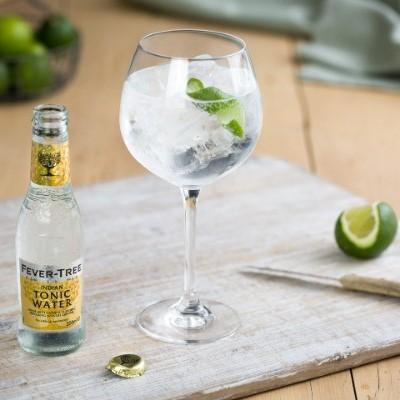 fever tree g&t lifetstyle shot