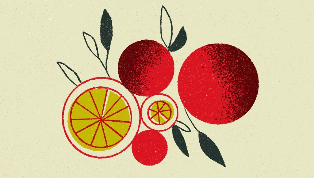 How to Create a Simple Geometric Fruit Illustration in Procreate