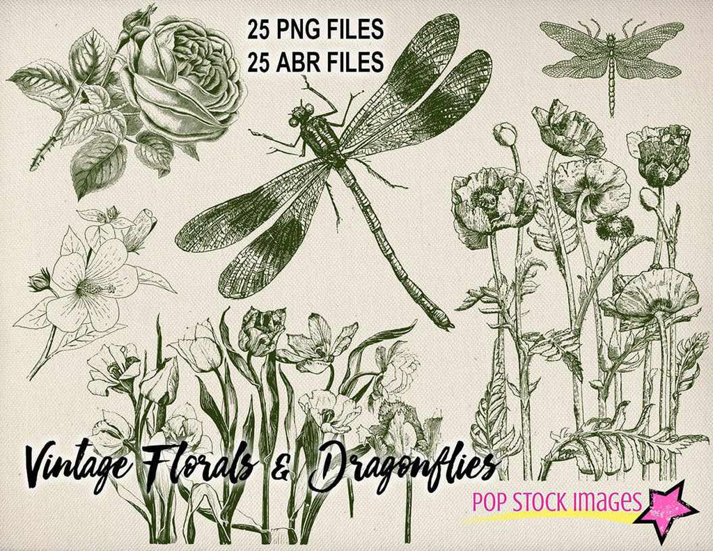Retro Photoshop brushes: vintage floral and dragonfly