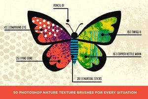 Bug Lab | Nature Texture Brushes for Photoshop Brushes RetroSupply Co.