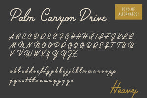 Palm Canyon Drive [Deluxe Edition] Fonts RetroSupply Co